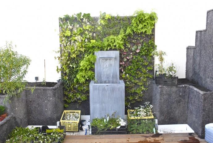 terrasse mur vegetal