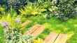 Fougères persistantes (dryopteris erythosora, polystichum setiferum), hostas et tapis d'helxine bordent le chemin.